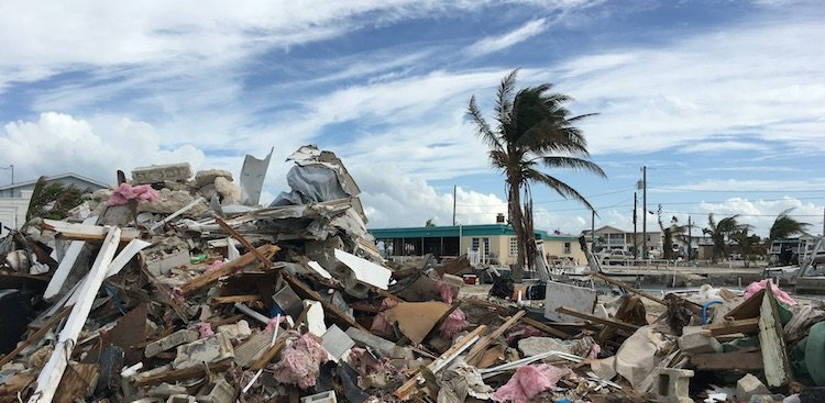 How to Be Your Best Professional Self During a Natural Disaster